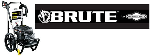 Briggs & Stratton Brute 020442-0 Replacement Parts, pump breakdown, repair kits, owners manual and upgrade pump