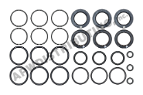 Cat Pump Seal Kit - 30983