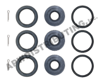 Cat Pump Seal Kit - 34053