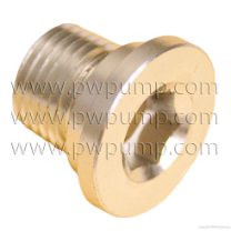 WATER INLET SCREW