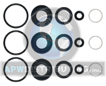 Cat Pump Seal Kit - 31684