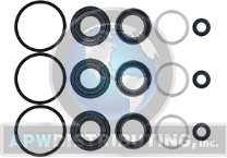 Cat Pump Seal Kit - 34262