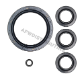 Oil Seal Kit (SKU: AR2797)