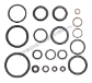 O-Ring Kit (Unloader only) (SKU: AR2812)