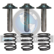 Piston Kit (SKU: PM344920SV)