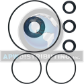 Oil Seal Kit (SKU: AR1855)